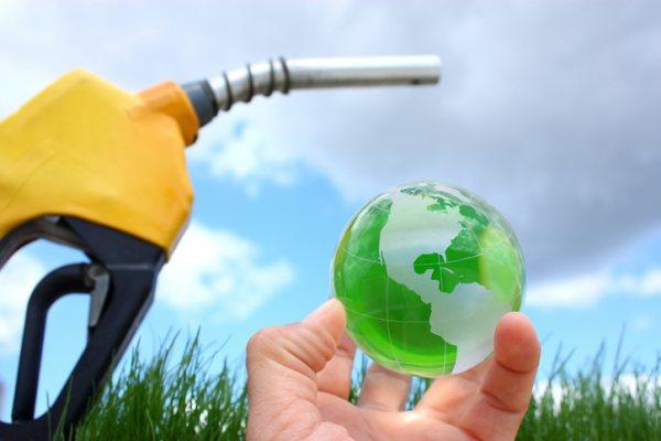 Manguinhos volta ao mercado com biodiesel